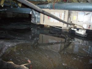 I was very lucky - see the label on the heater in the background? The water had risen to halfway up that label.