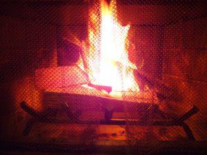 My first fire!