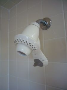 Old Showerhead